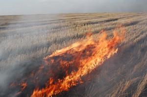 burning image